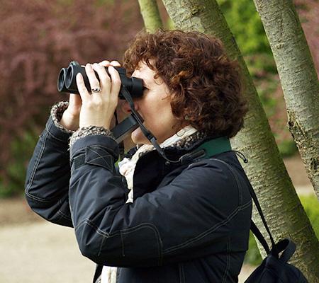 Linda Jenkinson - Start Birding