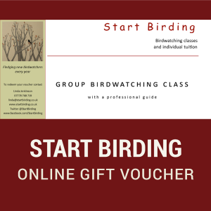 Group Start Birding Online Gift Voucher